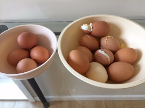 Boiling eggs, the ones on left are out of thermomix, the ones on the right from pot on stove