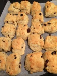 Never fail scones made in a minute