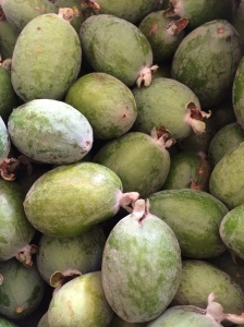Feijoas from our tree