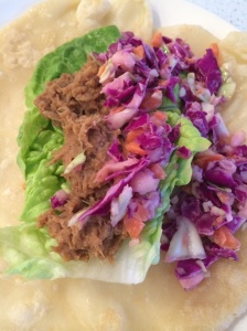 Pulled pork tortilla